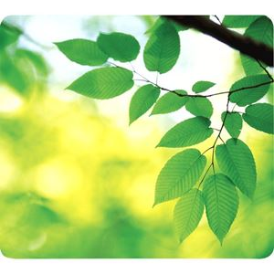 Picture of Mousepad Fellowes Earth Series Mousepads 5903801